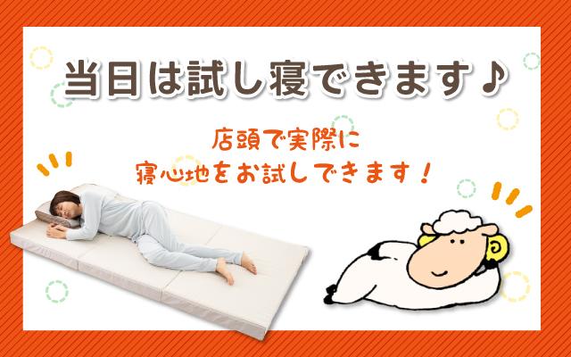 店頭で実際に寝心地をお試しできます!
